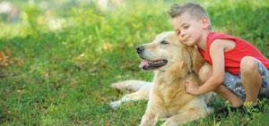 Titelbild Tierhalterhaftpflichtversicherung